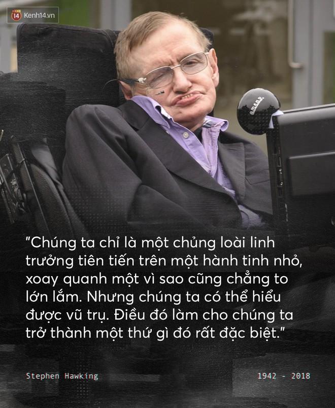 Những câu nói để đời của Stephen Hawking: Từ suy nghĩ giản đơn về cuộc đời cho tới triết lý mang tầm vũ trụ - Ảnh 3.