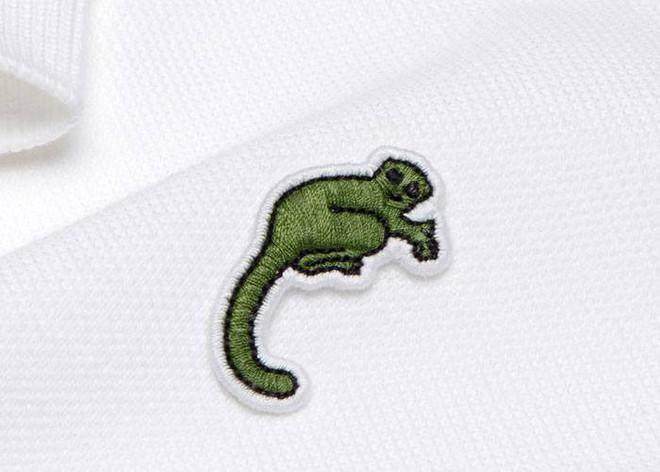 Lacoste thay thế logo cá sấu trên áo polo bằng 10 loài động vật có nguy cơ tuyệt chủng - Ảnh 6.