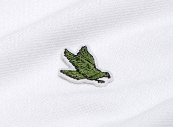 Lacoste thay thế logo cá sấu trên áo polo bằng 10 loài động vật có nguy cơ tuyệt chủng - Ảnh 8.