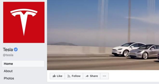 Elon Musk xóa hai trang Facebook chính thức của Tesla và SpaceX: Tôi không dùng Facebook và sẽ chẳng bao giờ dùng cả - Ảnh 3.