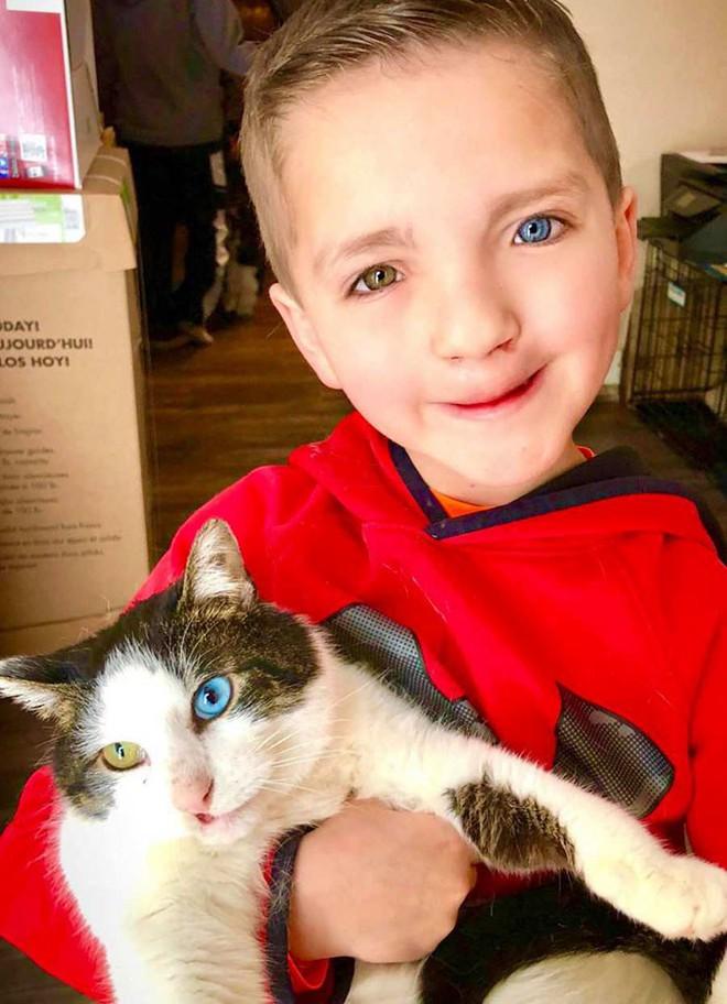 Cùng màu mắt, cùng bị tật ở miệng, số phận đã an bài cho cậu bé đáng thương và chú mèo hoang trở thành tri kỷ - Ảnh 2.