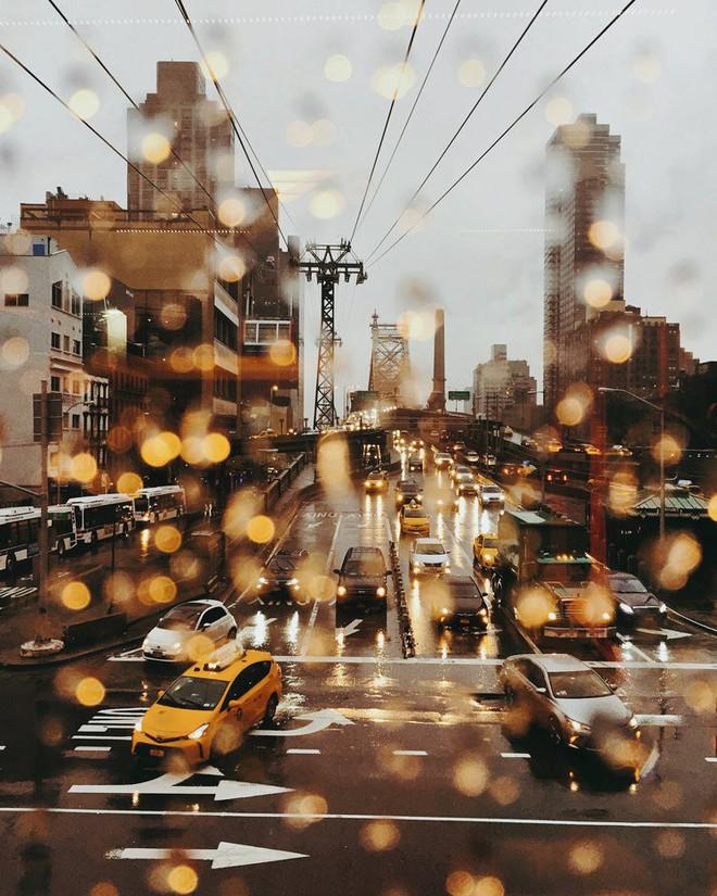 Giữa hơn 48,000 tác phẩm, 4 bức ảnh Việt Nam xuất sắc lọt top những bức ảnh đẹp nhất thế giới - Ảnh 11.