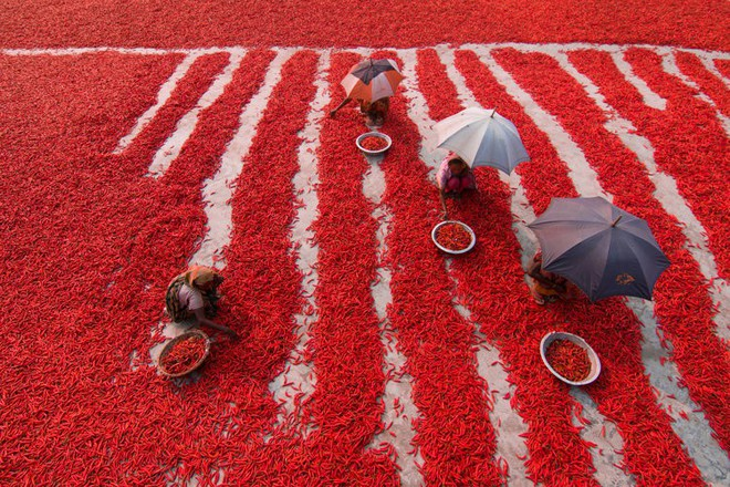 Giữa hơn 48,000 tác phẩm, 4 bức ảnh Việt Nam xuất sắc lọt top những bức ảnh đẹp nhất thế giới - Ảnh 7.