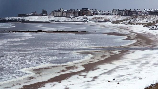 Hình ảnh bão tuyết Emma quần thảo dữ dội khiến nước Anh tê liệt - Ảnh 8.
