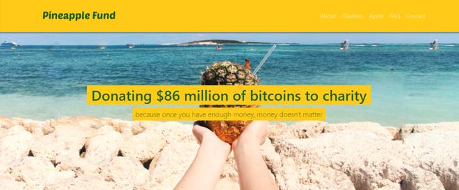 Giao diện trang web Pineapple Fund: Ủng hộ số Bitcoin trị giá 86 triệu USD cho từ thiện, bởi một khi bạn đã có số tiền đủ lớn, tiền không còn quan trọng nữa.