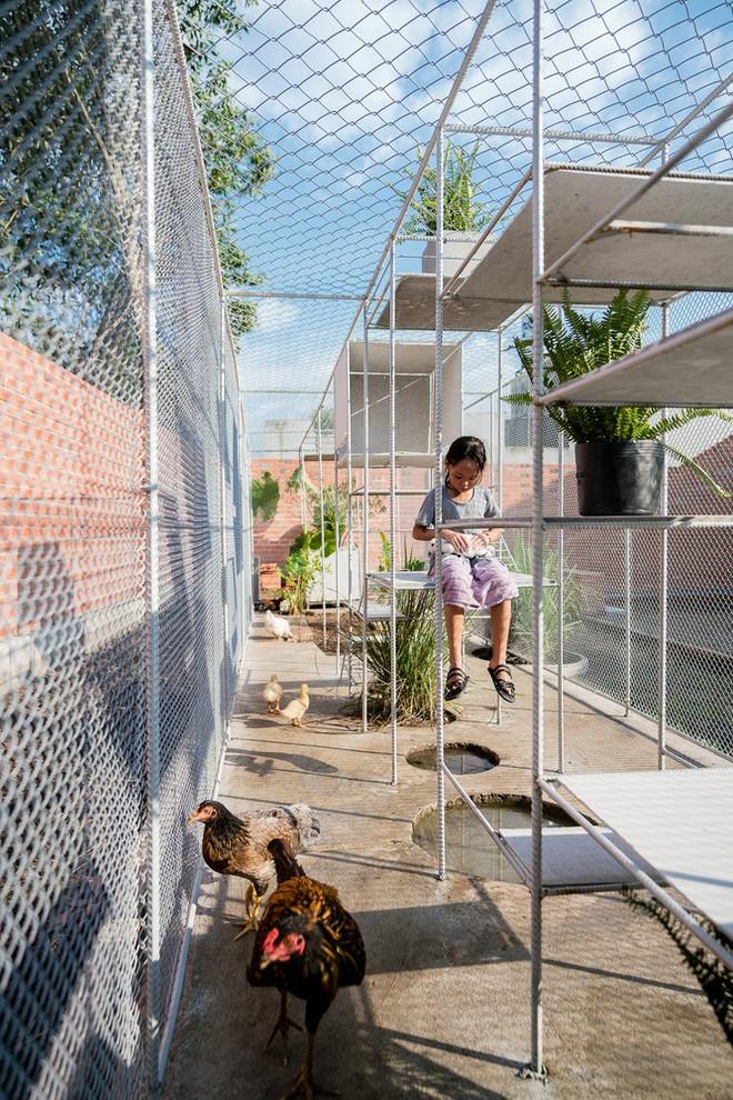 Chuồng gà ở Long An được lên tạp chí kiến trúc Mỹ - Ảnh 6.