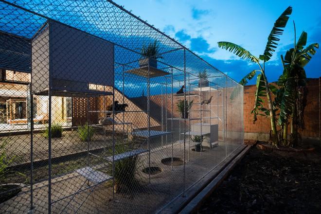 Chuồng gà ở Long An được lên tạp chí kiến trúc Mỹ - Ảnh 5.