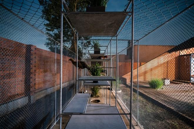 Chuồng gà ở Long An được lên tạp chí kiến trúc Mỹ - Ảnh 17.
