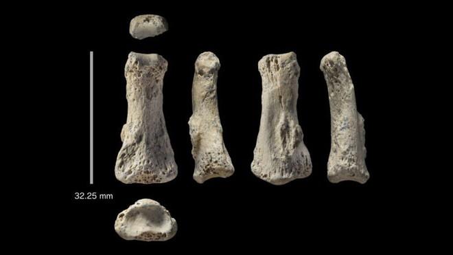 Một mẫu xương ngón tay 88.000 năm tuổi có thể khiến lịch sử loài người phải viết lại - Ảnh 1.