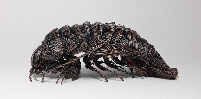 Ấn tượng với kỹ thuật uốn dây đồng tạo nên những tác phẩm điêu khắc cực ấn tượng của nghệ sỹ người Nhật - Ảnh 11.