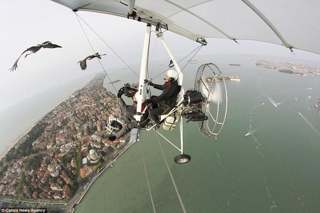 Phía trên Venice, khi Moullec đang cố gắng thuyết phục ngỗng bay cùng ông