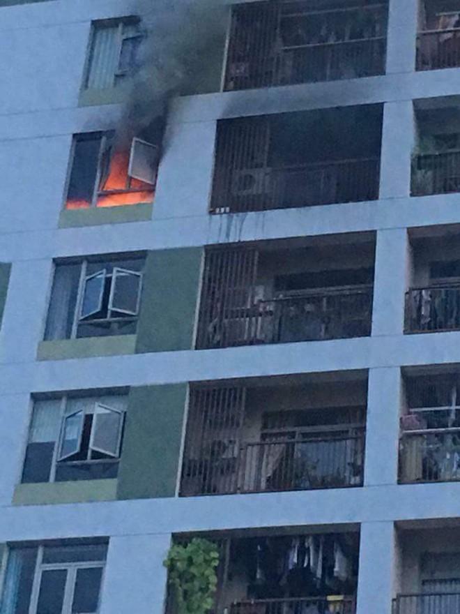 Cục sạc dự phòng cắm trong ổ điện phát hỏa là nguyên nhân gây cháy tại chung cư PARC Spring - Ảnh 1.