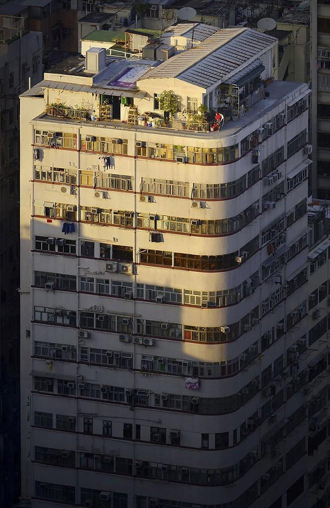[Ảnh] Concrete stories: Cuộc sống muôn màu trên những tầng thượng của Hồng Kông - Ảnh 12.