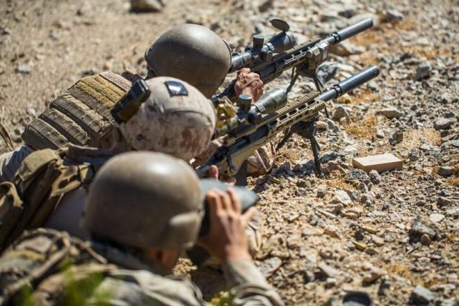 Sau hơn 40 năm thủy quân lục chiến Mỹ đã được thay súng trường bắn tỉa mới - Ảnh 2.