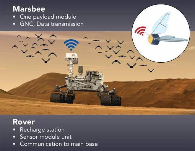 NASA bí mật phát triển robot giống loài ong để khám phá Sao Hỏa - Ảnh 1.