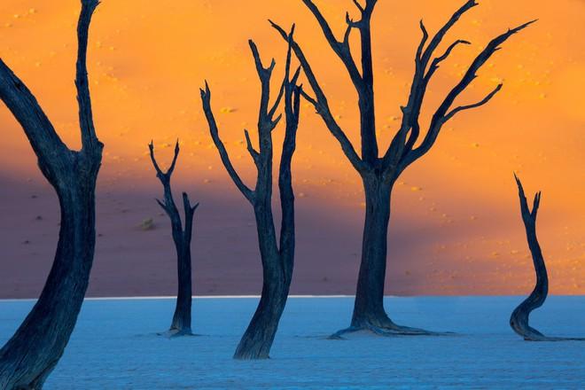 Hoa mắt với 12 cảnh đẹp tự nhiên mà nhìn qua cứ ngỡ là đồ họa - Ảnh 1.