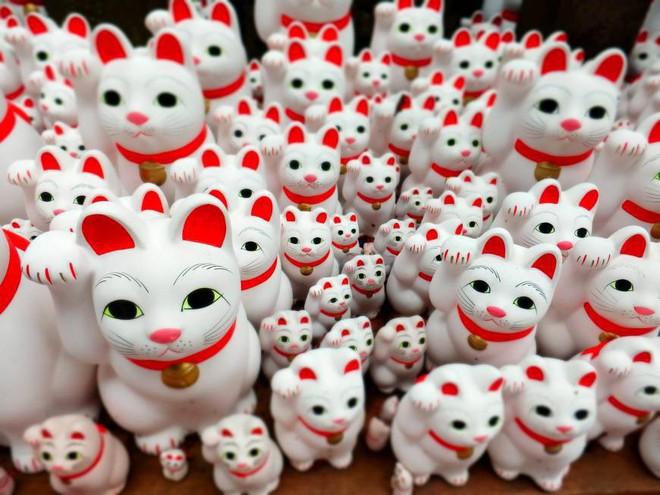 Bỏ cả nghìn đô để tìm mèo đi lạc và câu chuyện về nghề nghiệp đặc biệt chỉ có ở Nhật Bản - Ảnh 2.