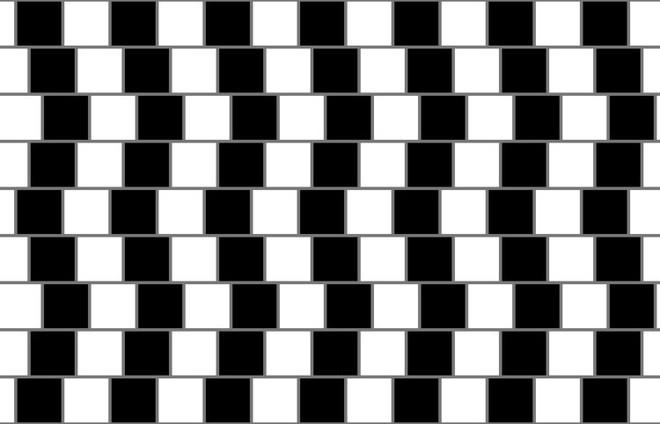 7 ảo ảnh được tạo ra từ thế kỷ trước nhưng vẫn khiến bạn phải hoa mắt chóng mặt - Ảnh 2.