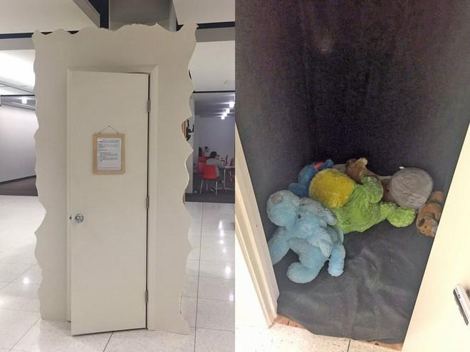 Một trường ĐH Mỹ tạo ra tủ cho sinh viên vào khóc khi gặp áp lực để không sợ ai nhìn thấy - Ảnh 1.