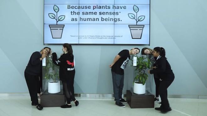 IKEA kêu gọi học sinh mắng chửi chậu cây cả tháng trời, kết quả sẽ khiến bạn tròn mắt - Ảnh 3.