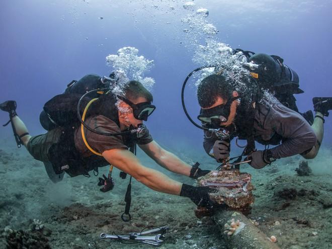 Bạn biết gì về hệ thống cáp quang biển dài 885.000km, xương sống của mạng lưới Internet trên toàn thế giới? - Ảnh 9.