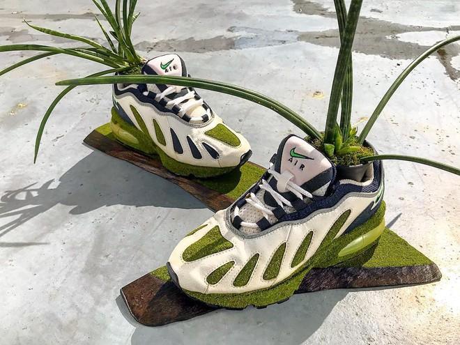 BST cây cảnh trồng trong giày khiến mọi sneakerhead phải suýt xoa ngưỡng mộ - Ảnh 3.