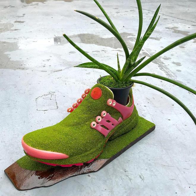 BST cây cảnh trồng trong giày khiến mọi sneakerhead phải suýt xoa ngưỡng mộ - Ảnh 8.
