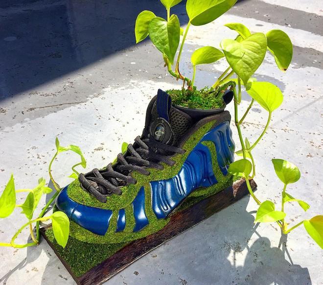 BST cây cảnh trồng trong giày khiến mọi sneakerhead phải suýt xoa ngưỡng mộ - Ảnh 10.