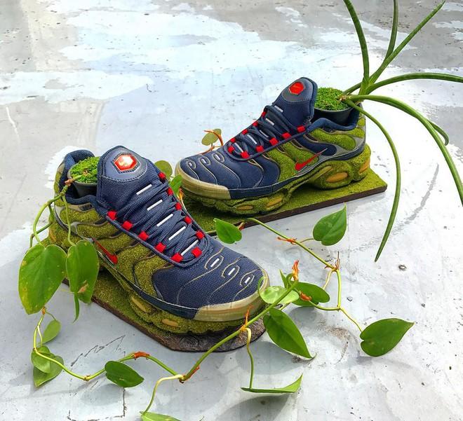 BST cây cảnh trồng trong giày khiến mọi sneakerhead phải suýt xoa ngưỡng mộ - Ảnh 11.