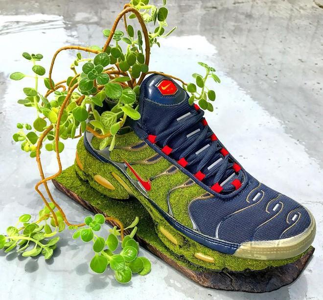 BST cây cảnh trồng trong giày khiến mọi sneakerhead phải suýt xoa ngưỡng mộ - Ảnh 12.