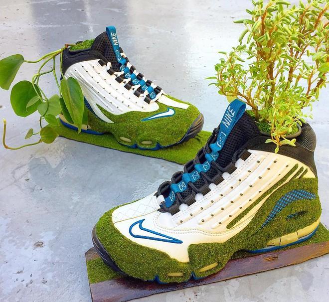 BST cây cảnh trồng trong giày khiến mọi sneakerhead phải suýt xoa ngưỡng mộ - Ảnh 13.