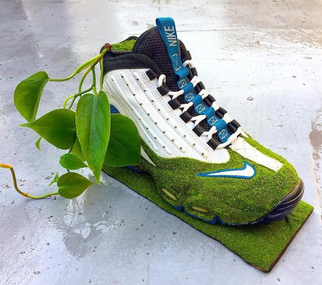 BST cây cảnh trồng trong giày khiến mọi sneakerhead phải suýt xoa ngưỡng mộ - Ảnh 14.