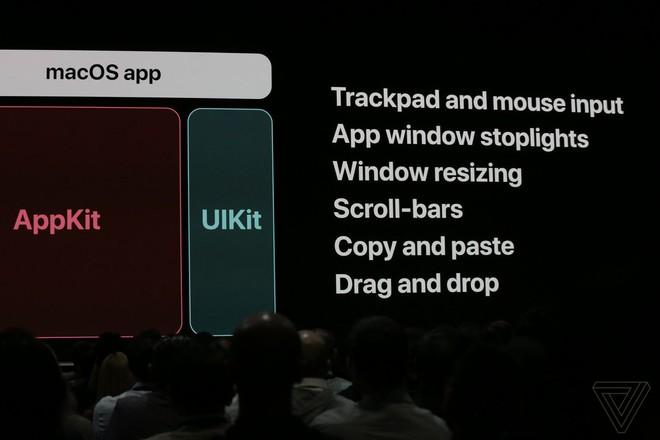 Bên trong nỗ lực của Apple nhằm đưa ứng dụng iOS sang máy Mac - Ảnh 3.