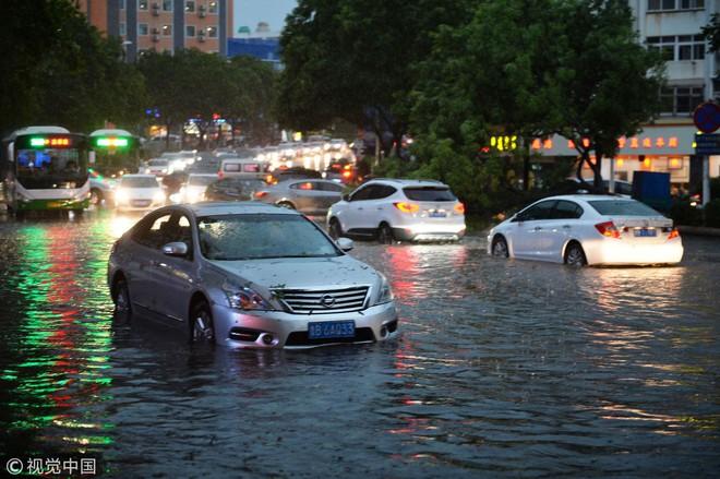 Trung Quốc: Bão lớn khiến hải sản tươi sống trút xuống như mưa trên đường phố - Ảnh 1.