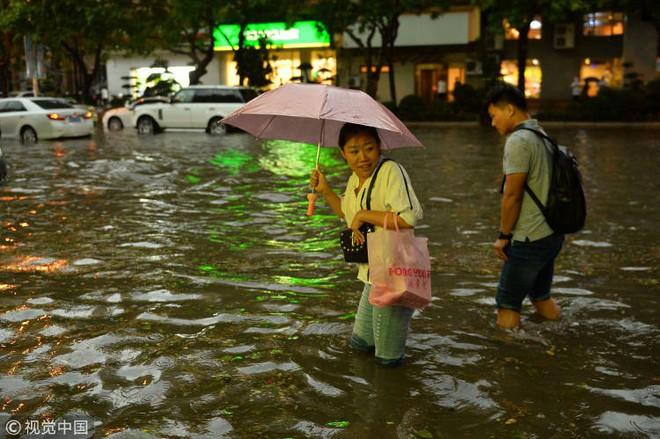 Trung Quốc: Bão lớn khiến hải sản tươi sống trút xuống như mưa trên đường phố - Ảnh 5.