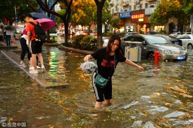 Trung Quốc: Bão lớn khiến hải sản tươi sống trút xuống như mưa trên đường phố - Ảnh 6.