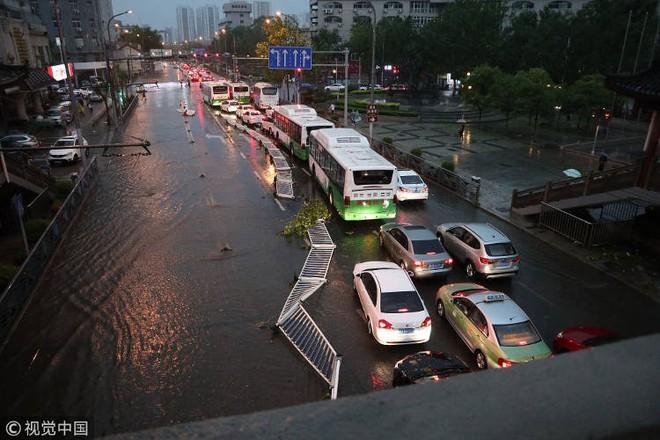 Trung Quốc: Bão lớn khiến hải sản tươi sống trút xuống như mưa trên đường phố - Ảnh 7.