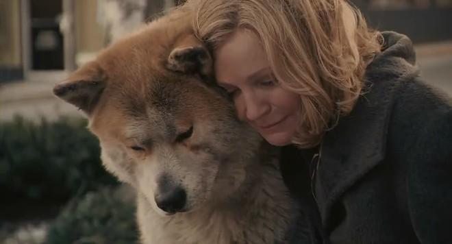 """""""Hachi: A Dog's Tale"""": Một chú chó có thể dạy bạn những gì, về tình yêu? - Ảnh 4."""