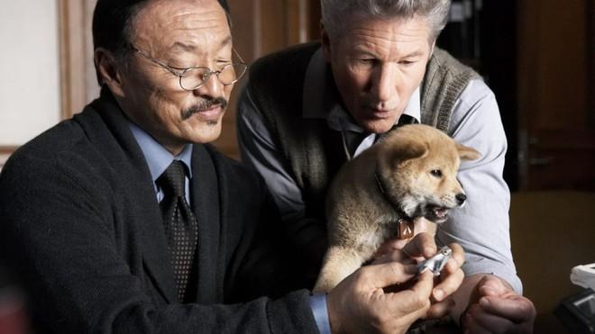 """""""Hachi: A Dog's Tale"""": Một chú chó có thể dạy bạn những gì, về tình yêu? - Ảnh 5."""