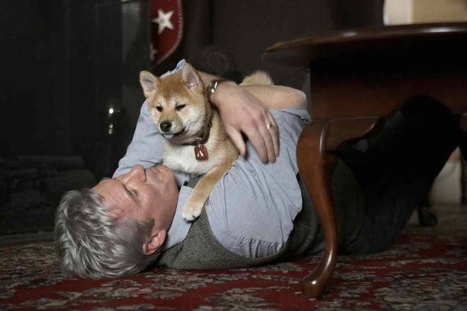 """""""Hachi: A Dog's Tale"""": Một chú chó có thể dạy bạn những gì, về tình yêu? - Ảnh 9."""