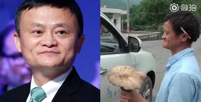 Trung Quốc: Phát hiện người đàn ông giống hệt Jack Ma rao bán nấm rừng ở ven đường - Ảnh 1.