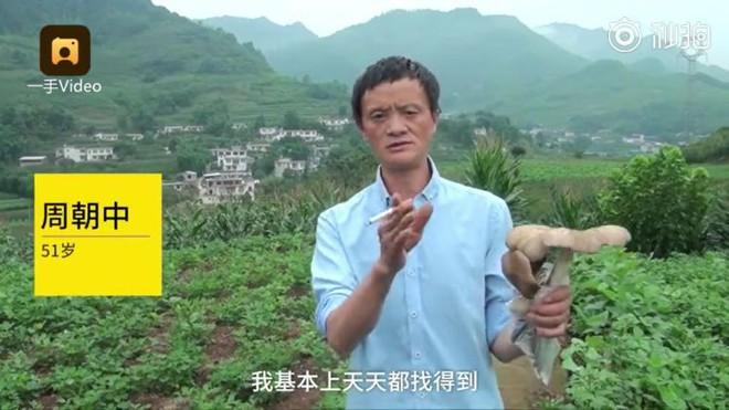 Trung Quốc: Phát hiện người đàn ông giống hệt Jack Ma rao bán nấm rừng ở ven đường - Ảnh 3.