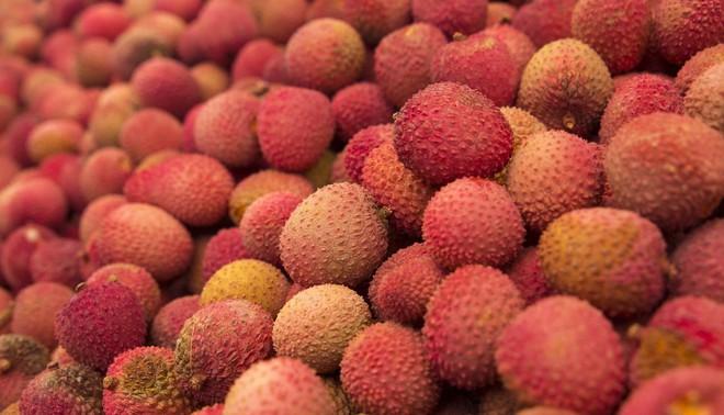 Một vấn đề đau đầu của hoa quả Việt có thể được giải quyết bởi startup này - Ảnh 1.