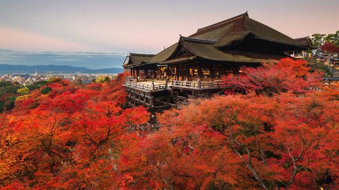 Nhật Bản - Xứ sở vạn vật đều là Thần - Ảnh 14.