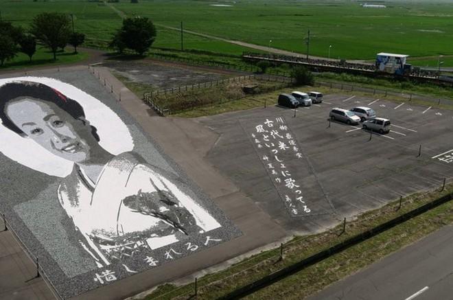 Có một cánh đồng lúa đặc biệt chuyên tạo ra các nhân vật hoạt hình nổi tiếng ở Nhật Bản - Ảnh 5.