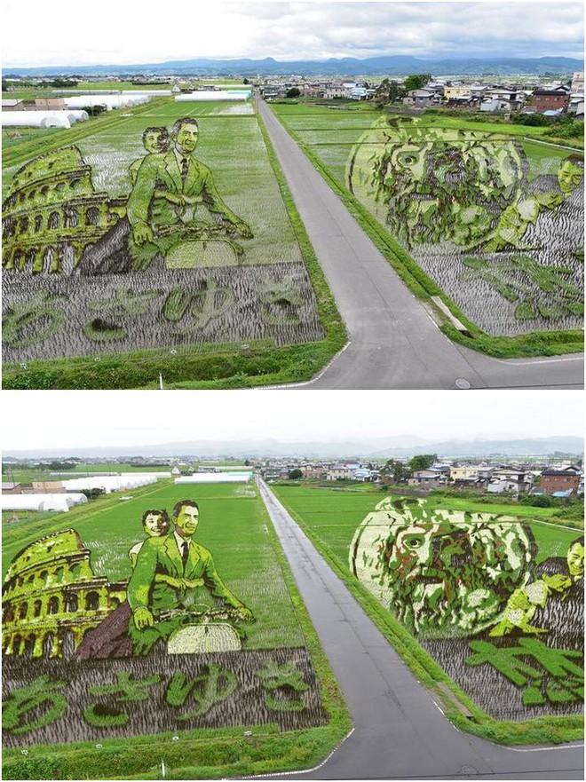 Có một cánh đồng lúa đặc biệt chuyên tạo ra các nhân vật hoạt hình nổi tiếng ở Nhật Bản - Ảnh 8.