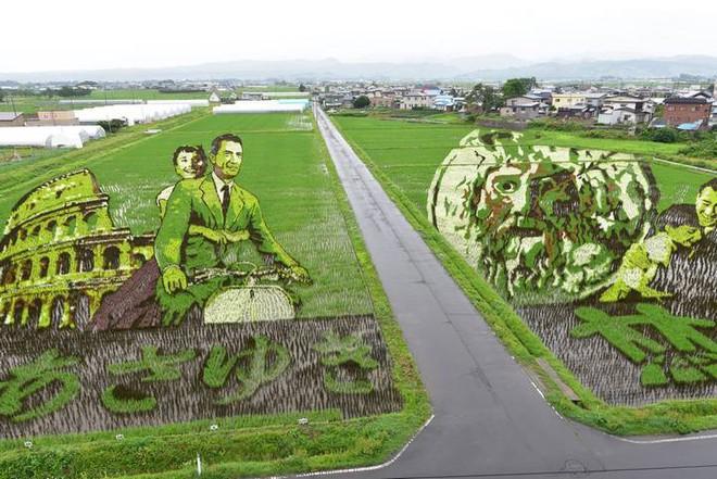 Có một cánh đồng lúa đặc biệt chuyên tạo ra các nhân vật hoạt hình nổi tiếng ở Nhật Bản - Ảnh 1.