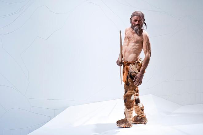 Xác ướp 5.300 năm tuổi trong băng tiết lộ chế độ ăn khoa học của người cổ đại - Ảnh 4.
