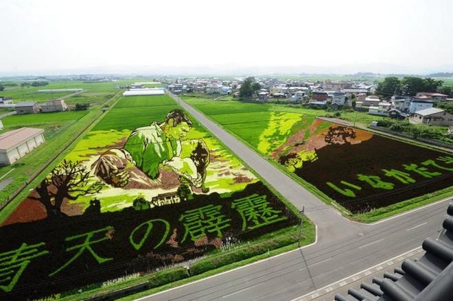 Có một cánh đồng lúa đặc biệt chuyên tạo ra các nhân vật hoạt hình nổi tiếng ở Nhật Bản - Ảnh 2.