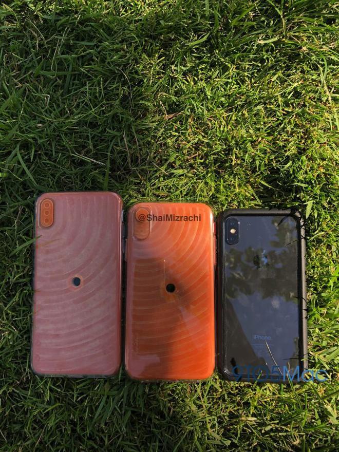 iPhone X (màu đen) có kích thước nhỏ hơn một chút so với iPhone 9 (giữa) và iPhone X Plus.